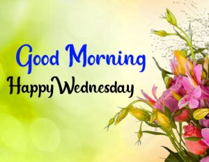 Flower good morning happy wednesday images hd