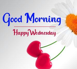 Flower good morning happy wednesday pics