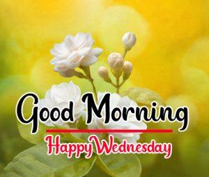 Flower good morning happy wednesday wallpaper