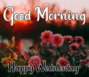 Good morning happy wednesday images with flower