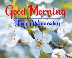 Good morning happy wednesday picture