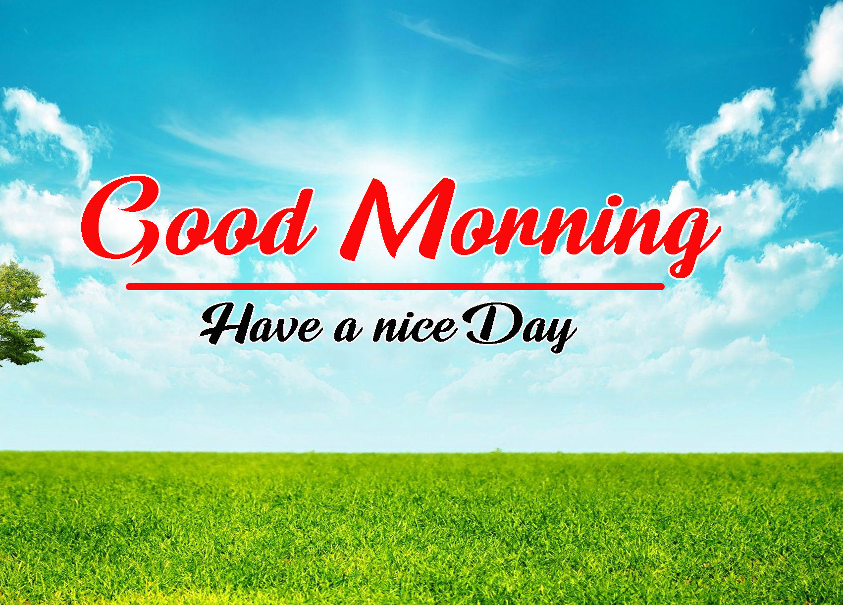 202+ Best 3D Good Morning Images Photo Wallpaper HD Download