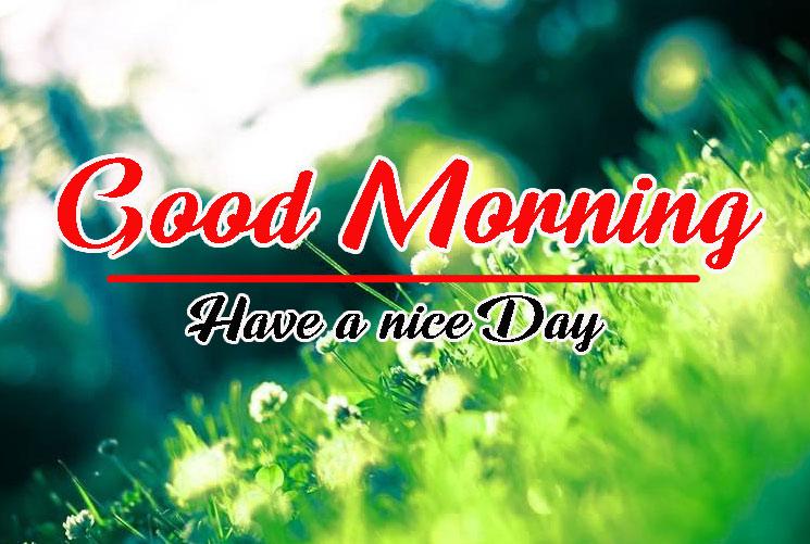 417+ Beautiful Good Morning Images Pics Photo Wallpaper Download
