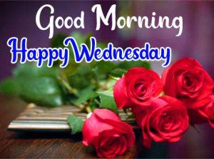 Rose flower Good morning happy wednesday images