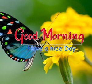 Wonderful Good Morning Images